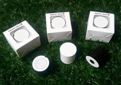 Bluetooth Speaker (Mini size)