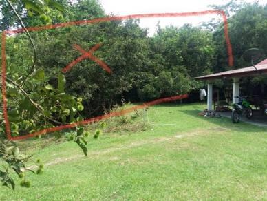 Tapak Rumah di Tg Ipoh, Terachi - 0.8 ekar