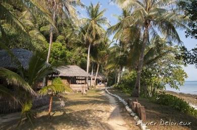 AMI Travel | 2D1N ke Rimba Resort, Pulau Sibu