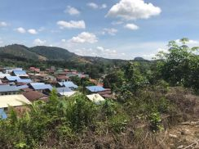 60 acres rubber plantation , karak, Pahang