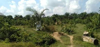 6 Ekar Tanah Pertanian Segamat