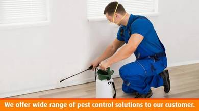 Pest Control Services / Kawalan Anai - Anai