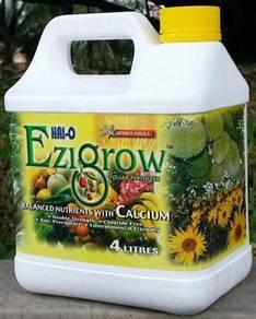Baja Foliar Air EziGrow Vitamin Organik