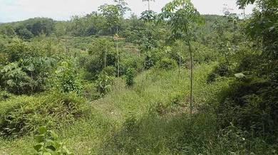 Tanah pertanian untuk dijual di kerling selangor