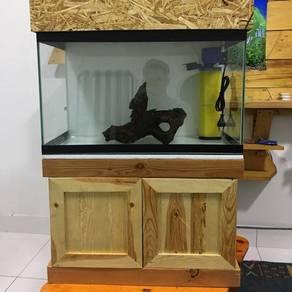 Aquarium concept 2 kaki