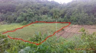 NT Land Kg. Basai, Penampang