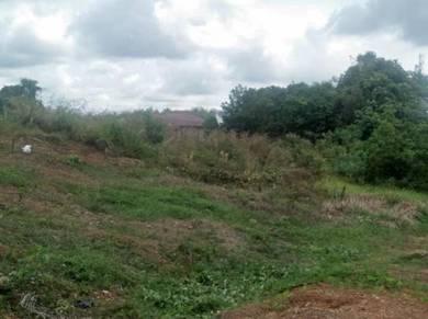 Tanah Lot Bergeran Untuk Dijual Batu 3 Jalan Lombong, Kota Tinggi