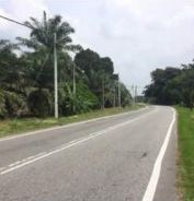Agriculture Land in Teluk Intan, Bidor for Sale
