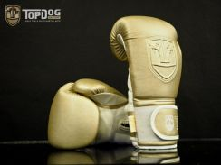 Boxing Gloves Top Dog - Gold