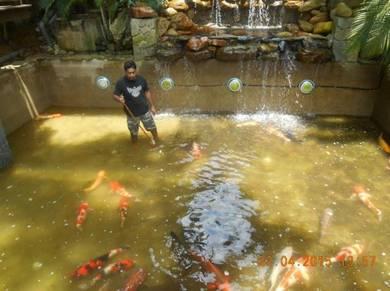 Kolam ikan dan kolam renang