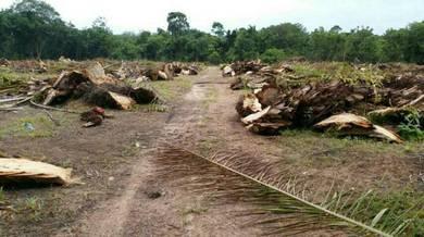 Tanah lot banglo murah untuk dijual Kelantan
