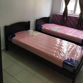 Single bed katil kayu