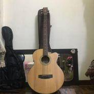 Cort Acoustic Bass