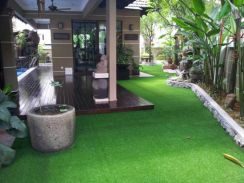 Artificial Grass Promotion