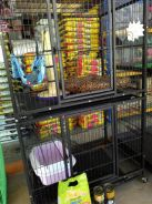 Pet shop nilai untuk ditukar milik