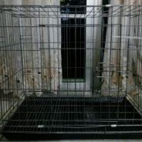 Sangkar kucing+tray