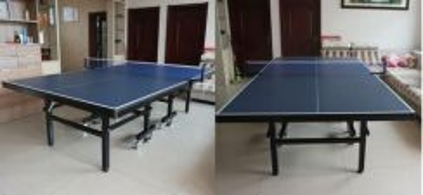 Professional ping pong table big