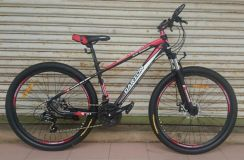 Basikal Garion 650B G275119 24 Speed