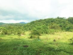Kulim Land 37.86 acres, near Kulim Hi Tech Park, 8 psf