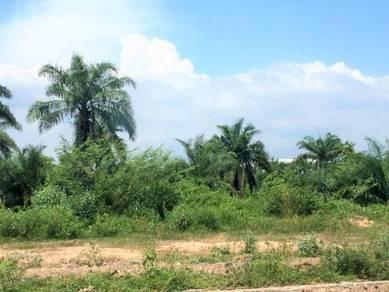 Kulim Hi Tech Freehold 15.2 acre land