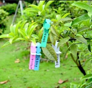 Plant Tagging