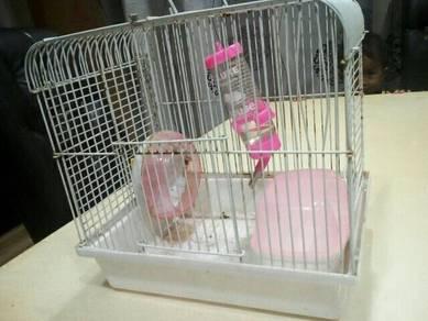 Hamster cage pre love