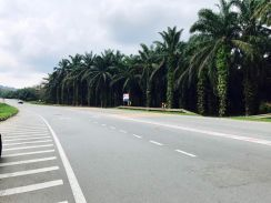 19.7 Acres Development Land at Jalan Mawai, Kota Tinggi, Johor