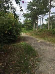 0.5 Acres Mixed Development Land, Kota Tinggi, Johor