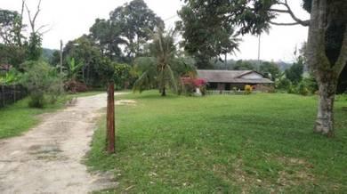 Tanah dan rumah untuk dijual di Kampong Lenggeng