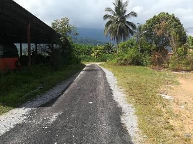 Tanah sawah / tapak rumah view tertarik 150 meter dari jalan utama