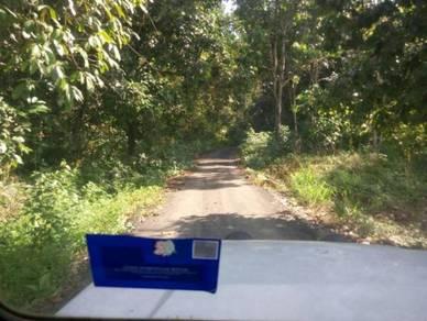 Tanah Pertanian untuk Tanaman Dusun