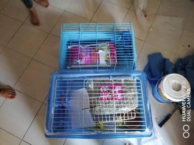 Cage/sangkar