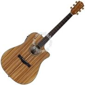 Fender CD220SCE