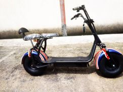 Herly scooter new