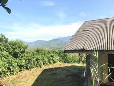 Tanah kebun buah atas bukit sungai lui hulu langat cheras