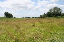Air Hitam agrucultural land for sale