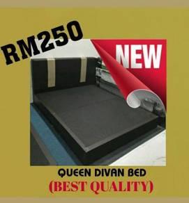 Queen divan bed 8 inci/ best quality #6817