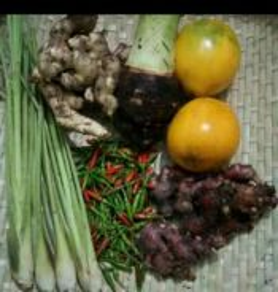 Pembekal sayuran kampung