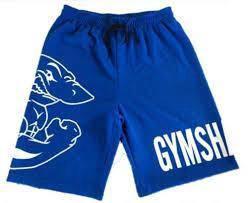 Gym Shark Fitness Short Pant ( Seluar sport) blue