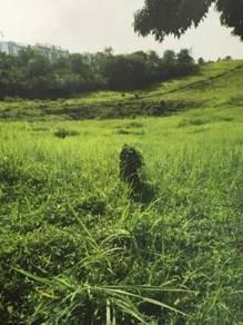 Agricultural land 29.95 acres Residential Zone Dengkil Ulu Langat