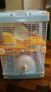 2 stages Wide Hamster Cage for sale