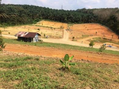 5 Acres Durian Farm, Ulu Tiram, Johor