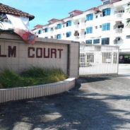 Fully furnished palmcourt apartment for rent