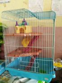 Kandang Hamster/S.Glider 3 Tingkat