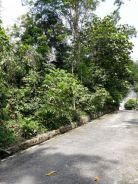 Land for sale in sungai penchala *direct owner