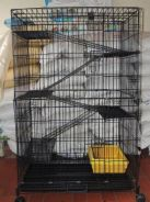Sangkar Kucing 5 Tingkat wrought iron