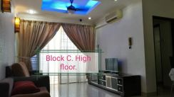N park fully furnished fully renovated
