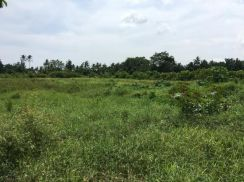 Land 10.5 acres Joint Venture Bukit Mertajam