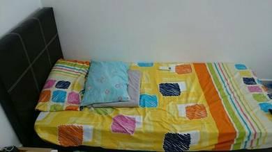 Room for Rent at Nilai - Near INTI