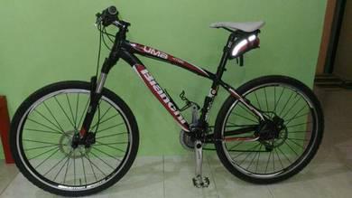 Bicycle - bienchi kuma